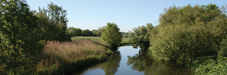 River scene in summer with clear blue skys in the Anglian Water region